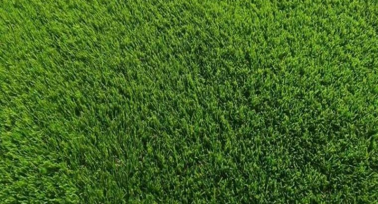 Artificial turf 5' by 7' or 10' synthetic grass